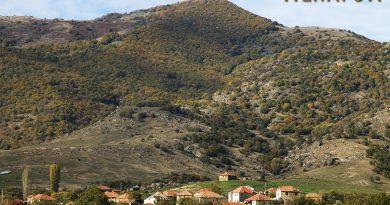Селото Крушевица