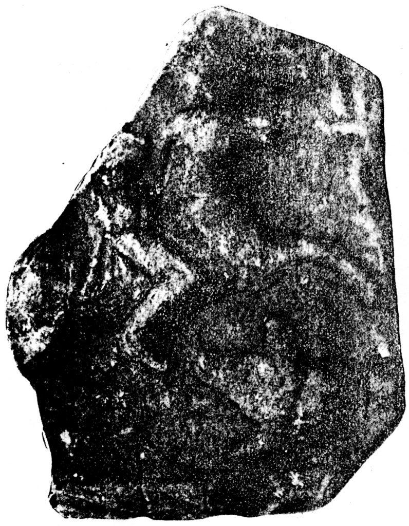 Фрагмент од мермерен споменик - тракиски коњаник