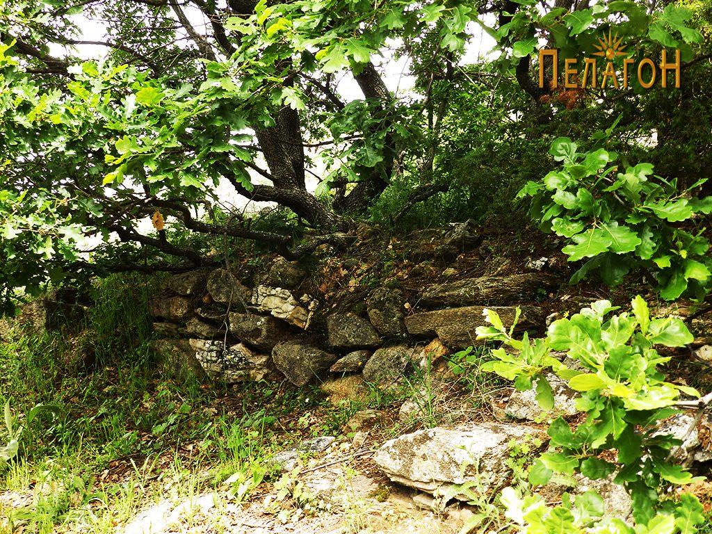 Остатоци од ѕид од стопанска градба