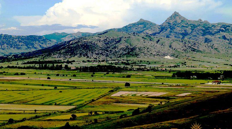 Поле и Света планина