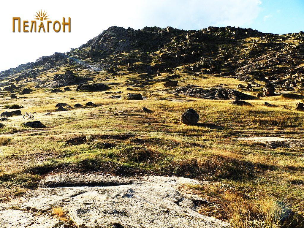 Поголем дел од локалитетот под ридот Зеленик