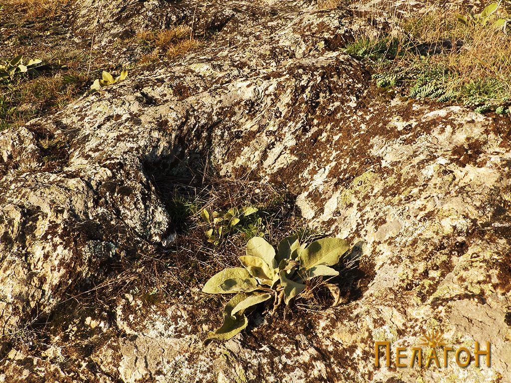 Гробо издлабен во карпа од некрополата