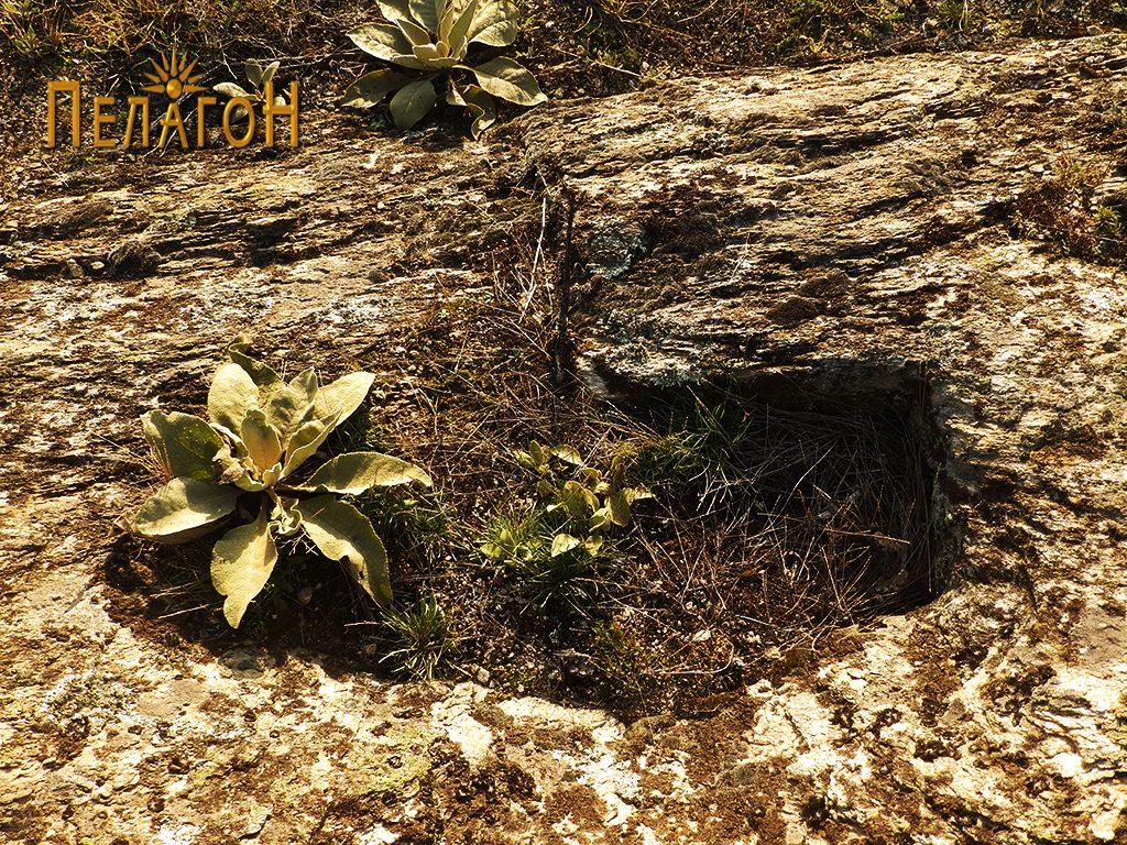 Два гроба во карпа од некрополата