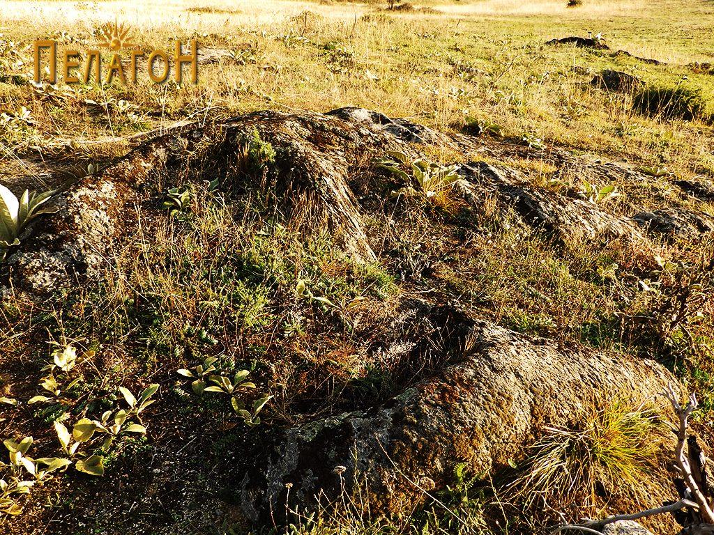 Два гроба во карпа од некрополата 2