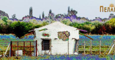 Куќа во Пелагонија