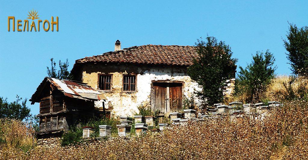 Една од преостанатите куќи во Живово