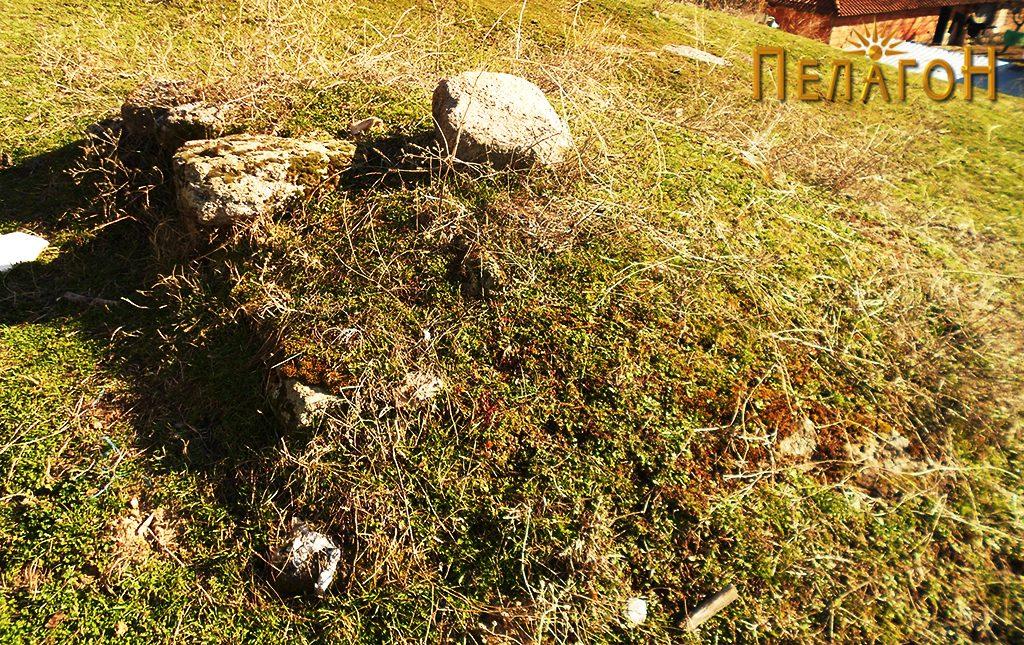 Остатоци од могилата денес 3