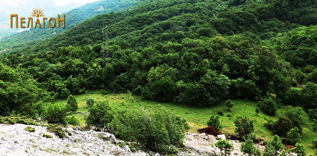 """Локалитетот """"Садои"""" со просторот на Агората и тумбата со акрополата со утврдување"""