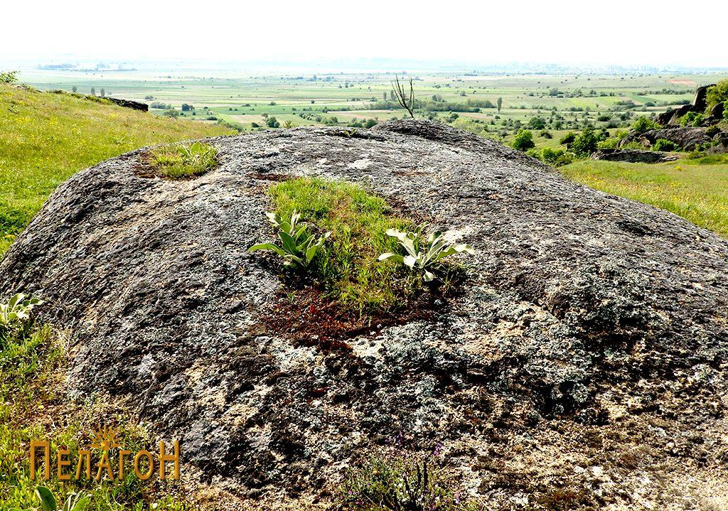 Двата гроба на карпа во близината 2
