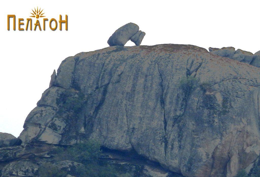 Карпата - мечка од север со големата карпа која служи за основа