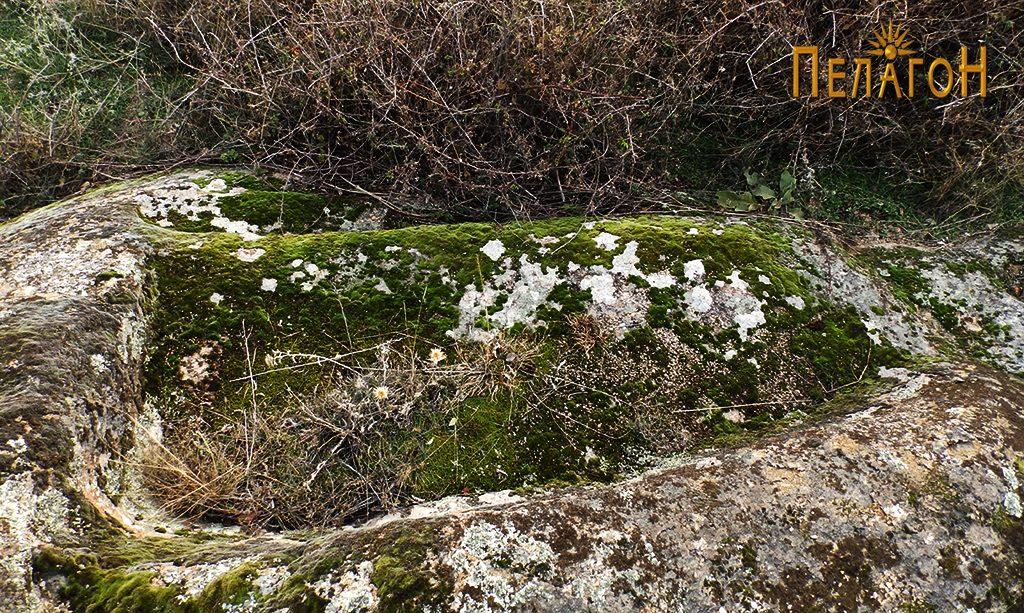 """Скалести форми по карпите од северната страна на """"Рамниште"""" 2"""