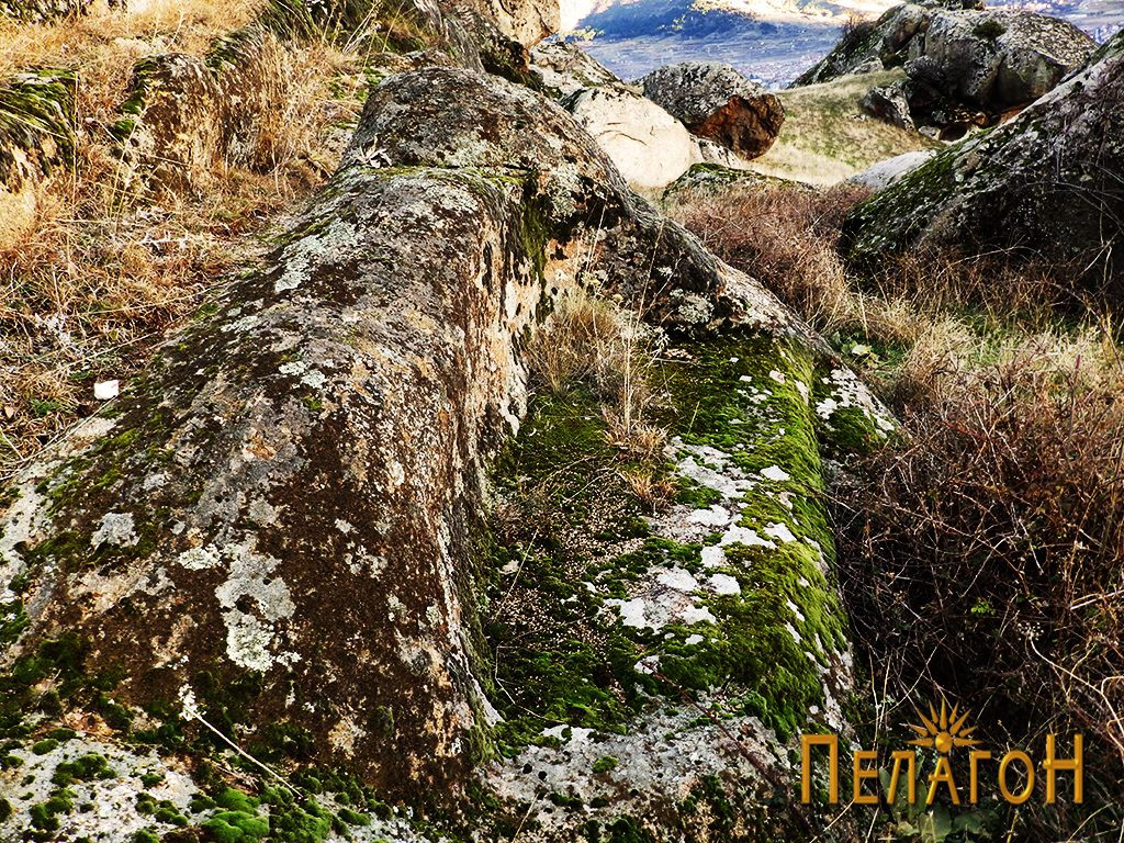 """Скалести форми по карпите од северната страна на """"Рамниште"""""""