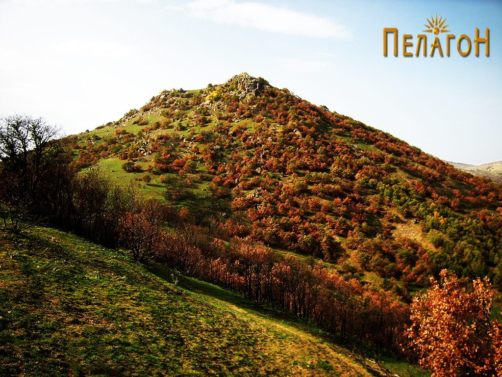 Врвот Маргара