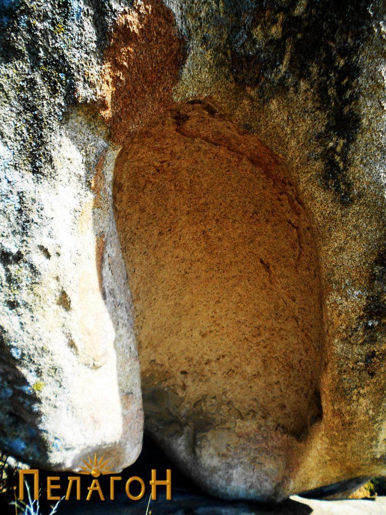 Нишата на карпата школка
