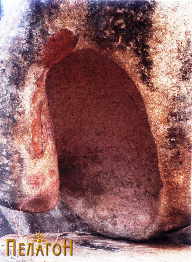 Големата ниша на карпата школка
