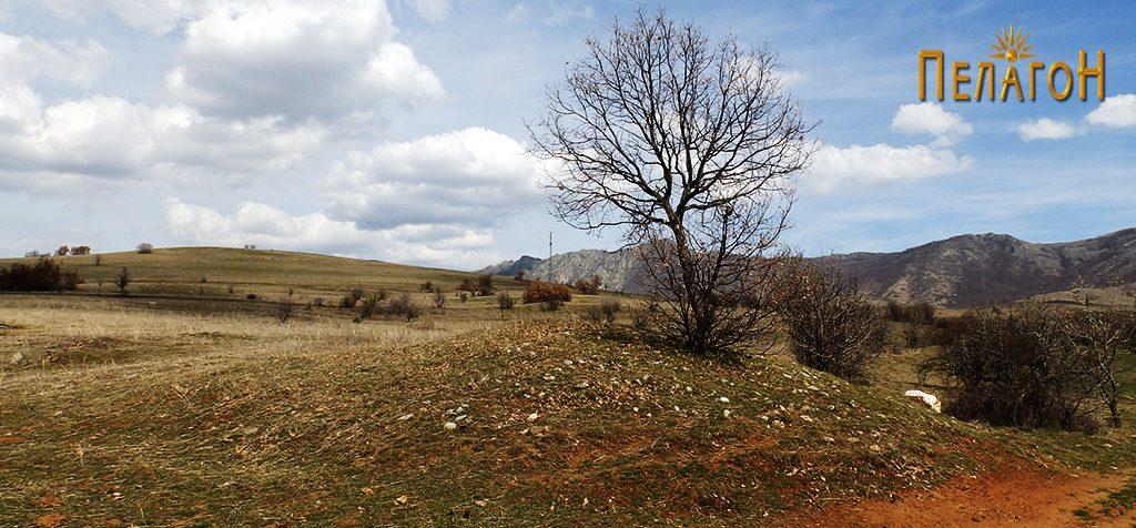 """Локалитетот """"Глува"""", снимен од југозападната страна со помала тумба во преден план"""