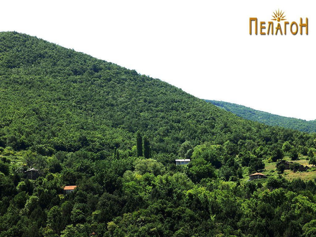 Остатоци од селото Врпско - нестото на битката 2