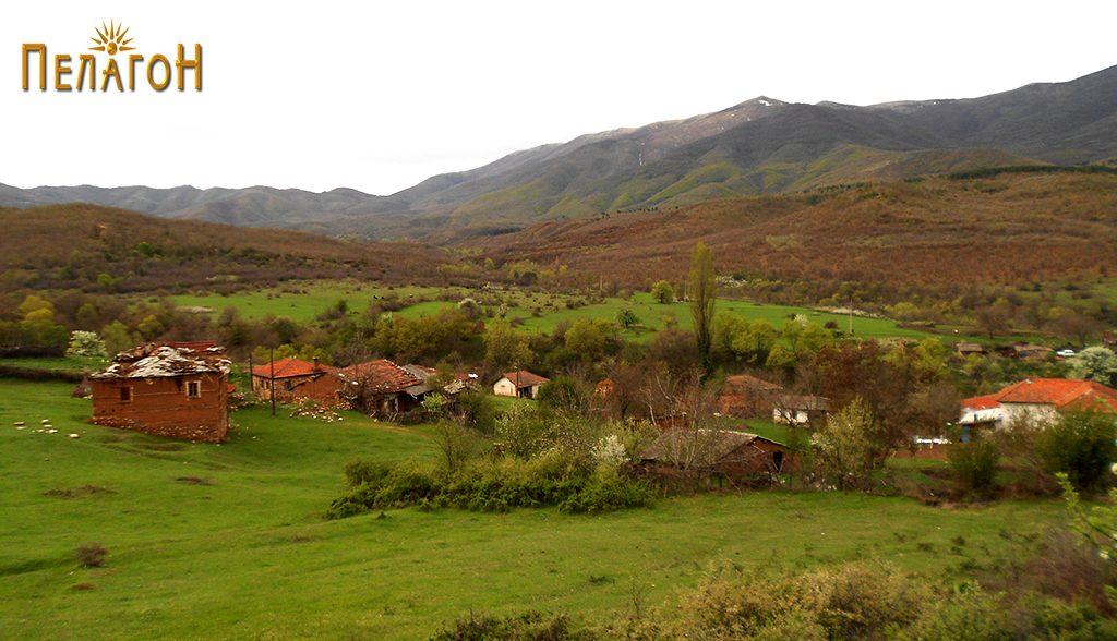 Селото Царевиќ
