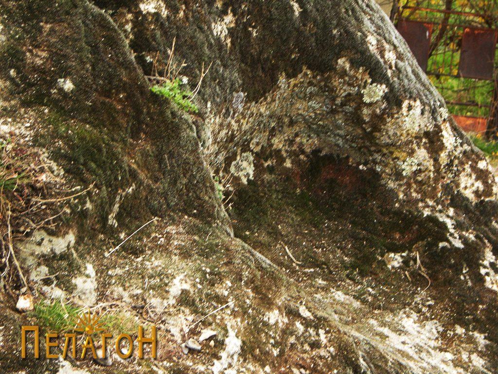 Крушно обработена форма во понискиот дел на карпата