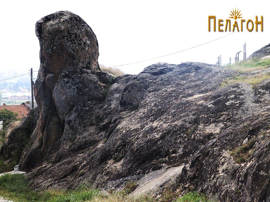 Заедно со карпестиот дел од север